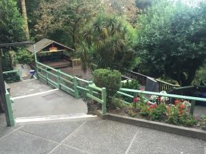 Redwoods-7